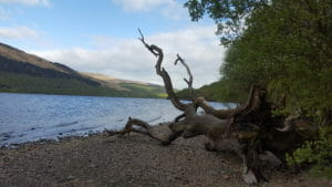 Camping Loch Lomond – What You Need to Know