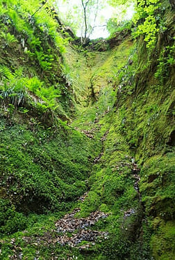 Stunning green colours of devils pulpit