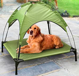 Raised dog bed with detachable canopy