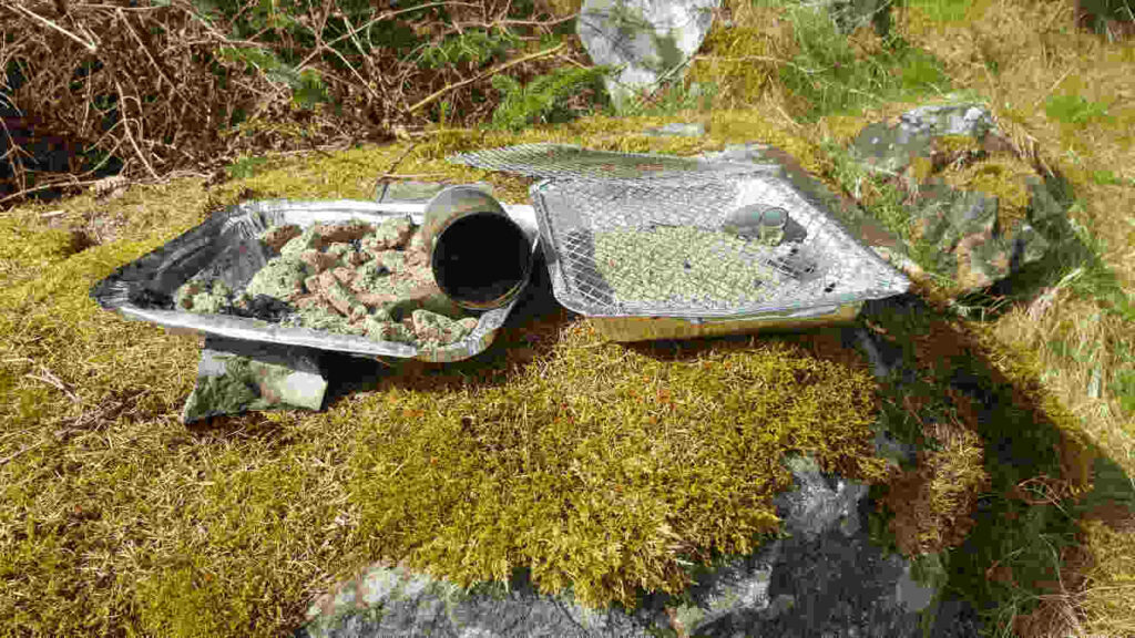 Disposable BBQs left by campers